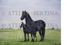 Fries paard en veulen tuinposter