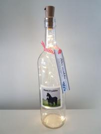flessen lamp met led verlichting (paarden Moai Fryslân)