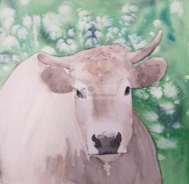 Blonde koe aquarel schilderij