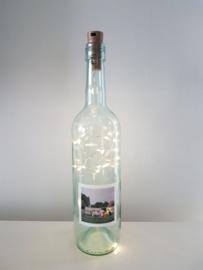 flessen lamp met led verlichting (koeien)