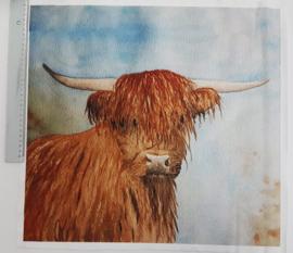 Schotse hooglander 45/ 50 cm stof
