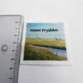 Moai Fryslân stof