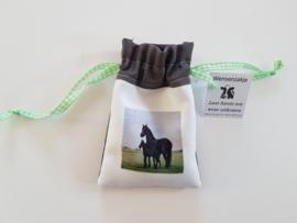 paarden wensen zakje: laat wensen uitkomen