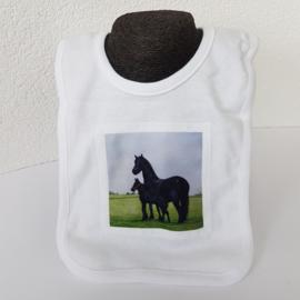 Paarden slabbetje