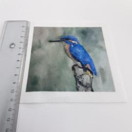 Ijsvogel stofje 10 cm