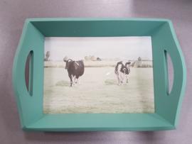 Dienblad koeien