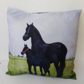 Kussen 2 paarden
