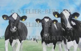 Nieuwschiergie koeien aquarel 2012