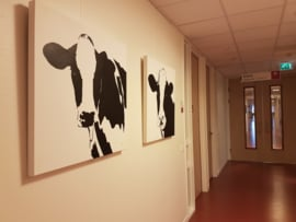 jan-maart 2017 Ziekenhuis Deventer