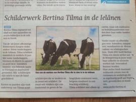 Expositie Reeks in Verpleeghuizen van Planteinte Sneek, Joure, Finke, Bolsward