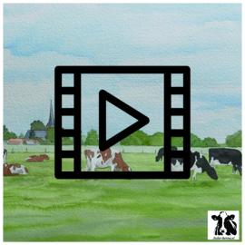 Live les / tutorial: aquarel koeien bij Lettele
