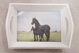 Dienblad paard