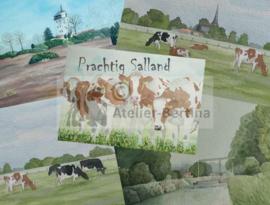 """Ansichtkaart """"Prachtig Salland"""""""