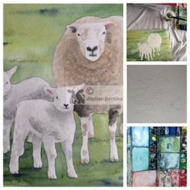 Sheep and lambs watercolor painting
