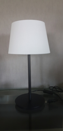 Ziege lamp