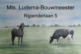 Bedrijfsnaambord ontwerp paard en koe