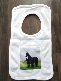 Horse bibs