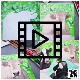 Live les / tutorial: achtergrond koe opzetten met zout