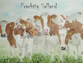 Kaarten Prachtig Salland
