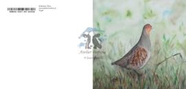 Vogel wenskaart