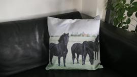 Kussen paarden