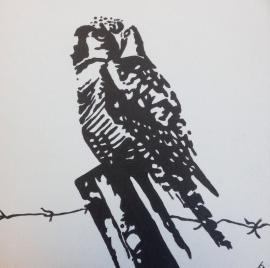 Uil acryl schilderij op canvas
