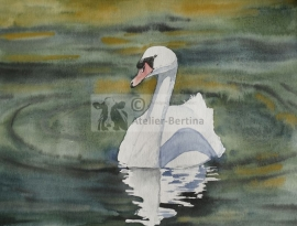 Swan watercolor painting