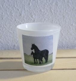 Sfeerlichtje paarden
