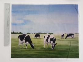 Koeien 38 x 48 cm stof