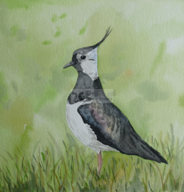 bird garden poster / garden painting