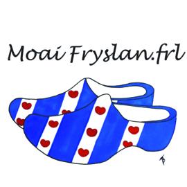 Paard cadeau geschenken pakket Moai Fryslân