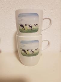 Mok koe (groot)