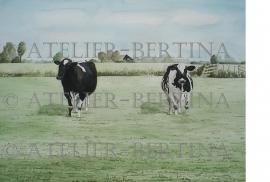 Kühe Außenanstrich / Gartenplakat
