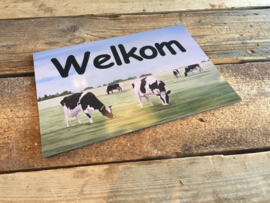 Welcome sign of cow