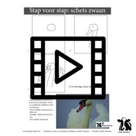 Live les / tutorial: zwaan