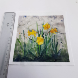 Narcis stofje 15 cm