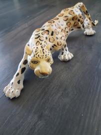 Opdracht: Jaguar beeld