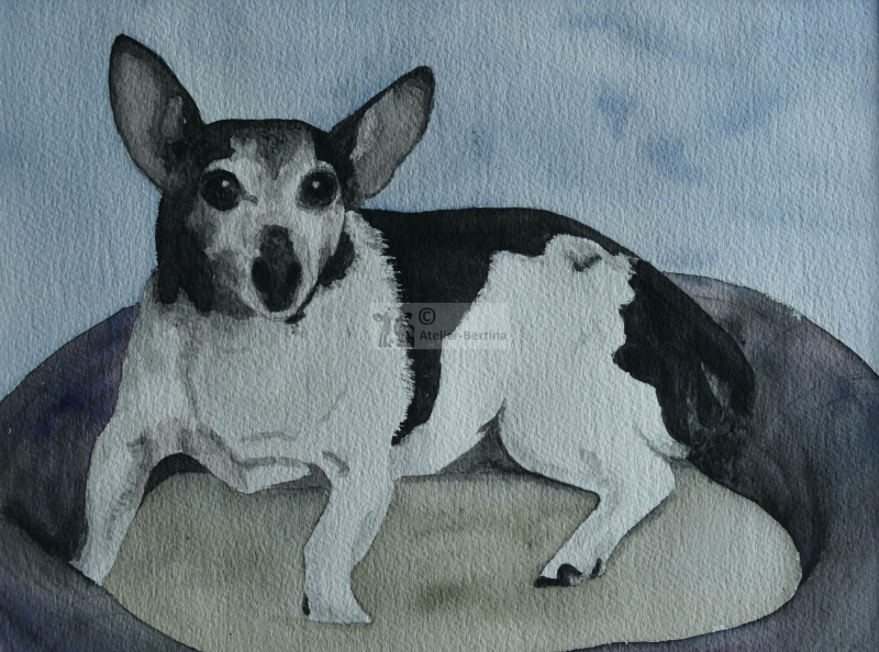 Hond aquarel