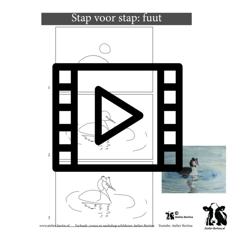 Live les / tutorial: schets van een fuut en aquarel schilderen