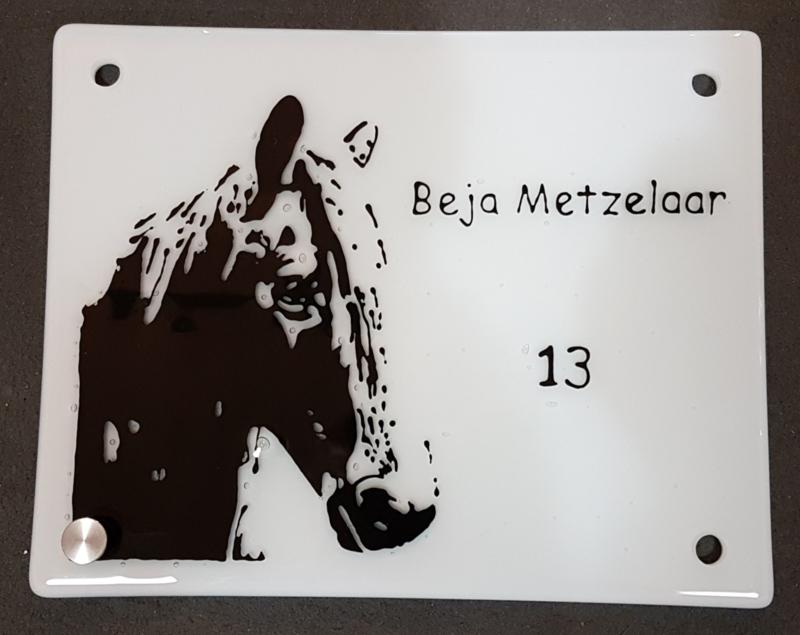 Naam- of huisnummerbordje van glas