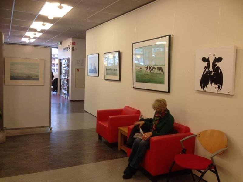 Expositie bibliotheek Heerenveen
