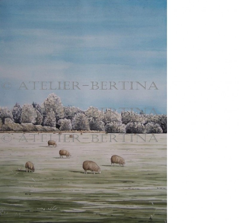 Aquarel winter schilderij: Schapen in de winter