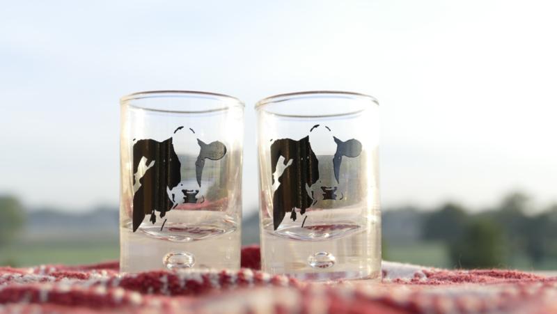 Schnapsglas Kuh