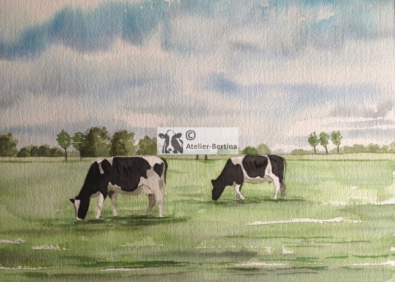 Cow watercouler painting