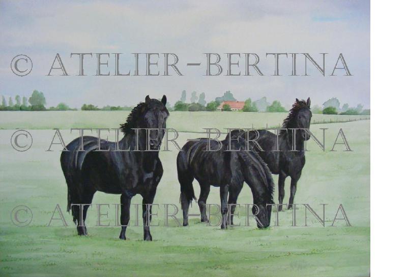 Friese paarden aquarel schilderij