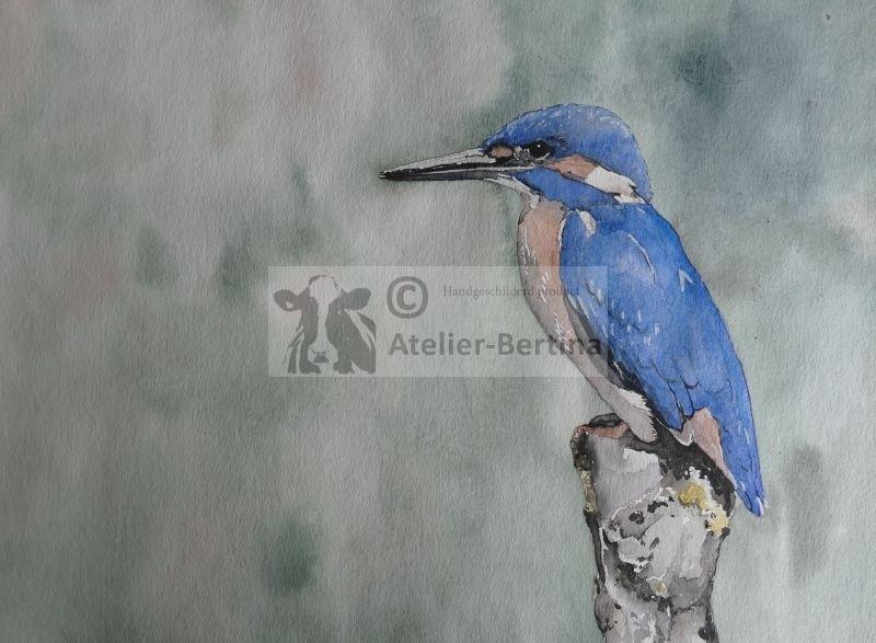 Kingfisher Aquarell Malerei
