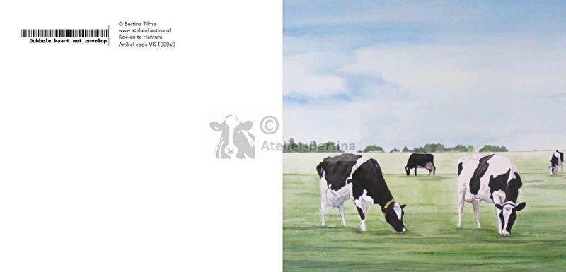 Koeien te Hantum wenskaart