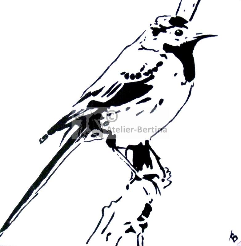Vogel acryl schilderij