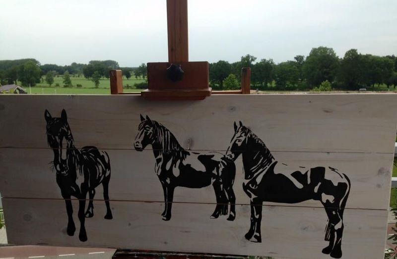 Paarden op steigerhout.