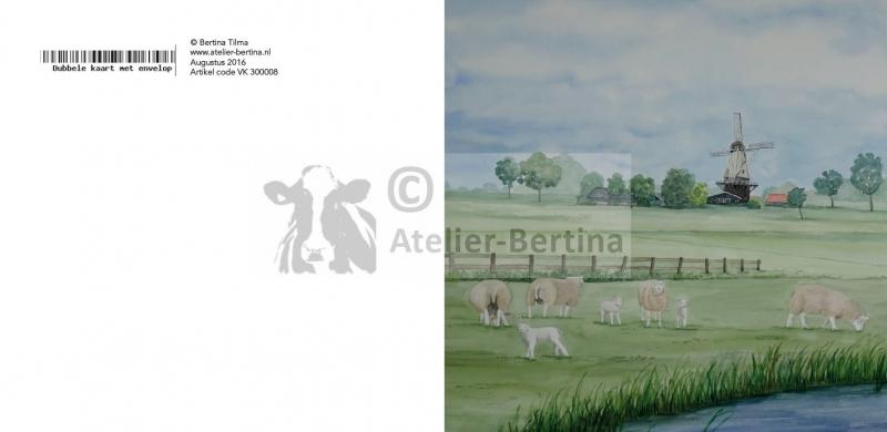 schapen landschap wenskaart